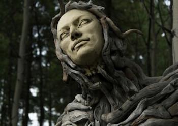SUZANNE PALECZNY: HUMAN / NATURE, Image via Yukon Arts Centre