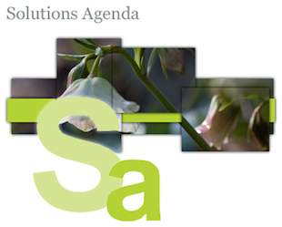 Solutions agenda graphic with flowers