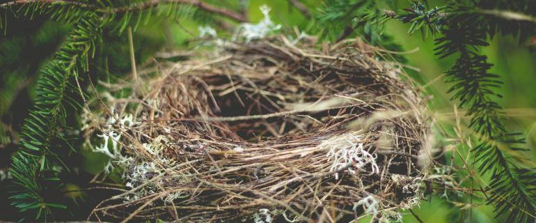 We need to develop a closed loop system and learn from the birds—no bird fouls its own nest.
