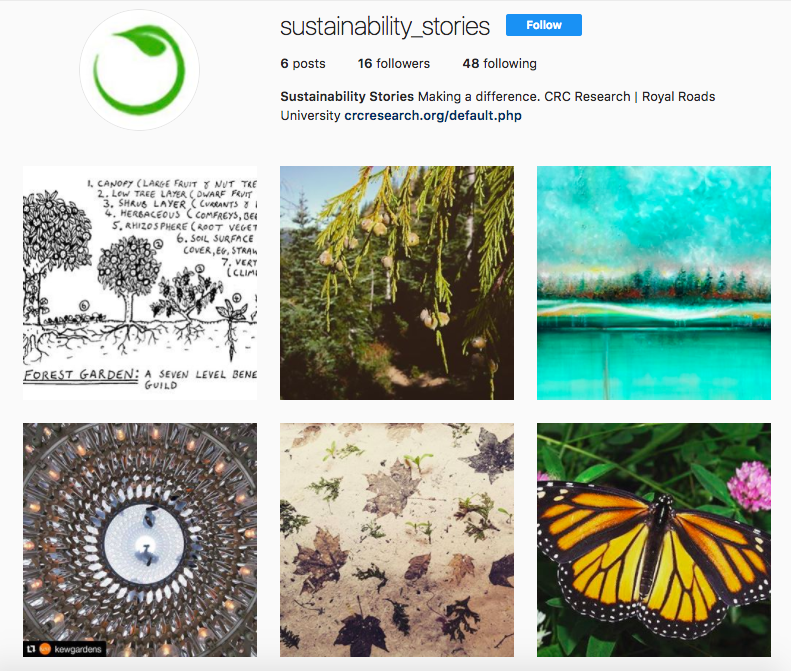 Sustainability Stories